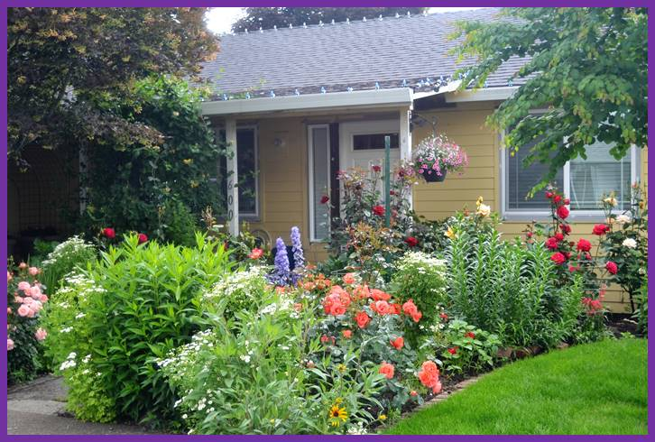Yard Of The Month: June 2016